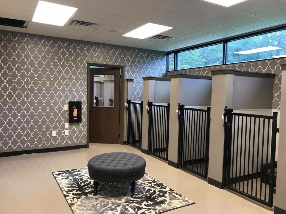 Pet Boarding facilities in willis tx