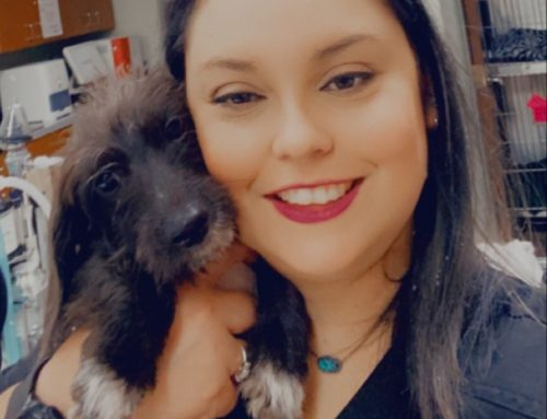 Meet the Team: Spotlight on Christy DuVall